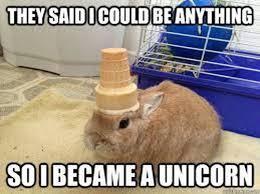 Unicorn Meme - 20 ridiculous unicorn memes that will make you laugh cheezcake