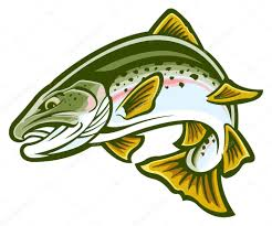 trout stock vectors royalty free trout illustrations depositphotos