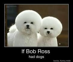 bichon frise meme all dogs go to heaven a religious journey through chicago
