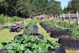 Strawberry Garden Beds 8 Tire Garden Ideas You Must Look On Balcony Garden Web