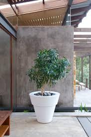 391 best planter design ideas images on pinterest planters