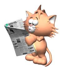 Newspaper Cat Meme - newspaper reading cat meme gif on imgur