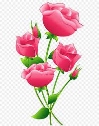 pink roses transparent png clip art image free transparent roses