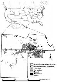 Net Use Map Drive 1995 Land Use Map Of The Phoenix Metropolitan Area Maricopa