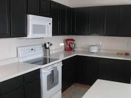 Diy Black Kitchen Cabinets Kitchen Black Painted Cabinets For Kitchen Design Diy Home Devotee