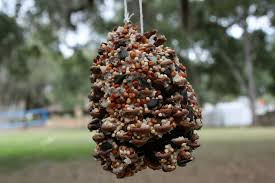 children u0027s crafts u2014 make a bird feeder green mom com