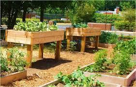 Raised Gardens Ideas Fresh Raised Vegetable Garden Bed Plans Gallery Best Garden