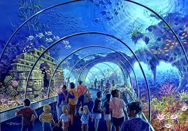 aquarium international theme park services inc