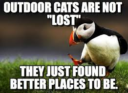 Lost Cat Meme - outdoor lost cats outdoor cats are not lost on memegen