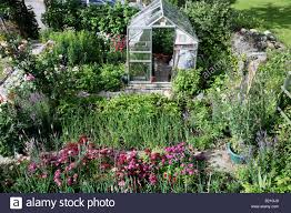 flowers for vegetable garden cottage garden with greenhouse flowers and vegetables stock photo