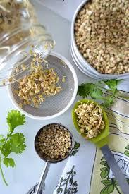 comment cuisiner le sarrasin comment faire germer du sarrasin le sarrasin végétalien