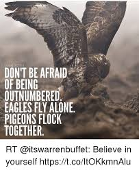 Together Alone Meme - luxquotes don t be afraid of being outnumbered eagles fly alone