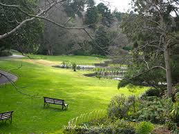 beautiful royal botanic gardens melbourne in australia country hd