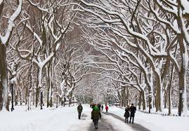 New York where to travel in january images Happy winter wind against current jpg