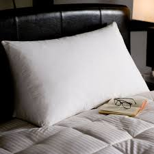 Pacific Coast Feather Bed Reading Wedge Pillow Blanket Warehouse