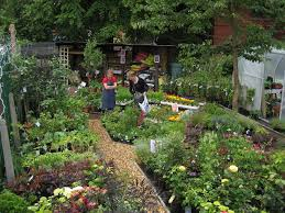 Garden Centre Best Garden Centres In Greater Manchester Manchester Evening News