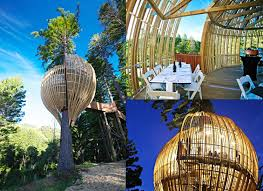 Treehouse Fostering Agency - 16 of the most unique restaurants in the world yellow treehouse