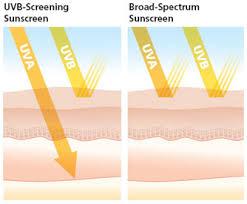 uva and uvb light uva uvb skincancer org