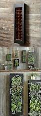 Herb Garden Planter Ideas by Wall Ideas Living Herb Wall Living Wall Garden Project Vancouver