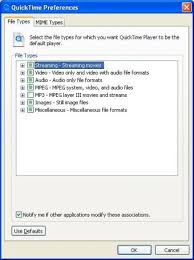 file format quicktime player quicktime 7 1 download free quicktimeplayer exe