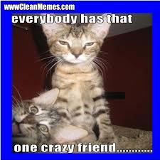 Crazy Friends Meme - that one crazy friend clean memes the best the most online