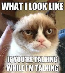 Talking Cat Meme - grumpy cat no talking tinyartroom