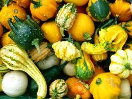 free images nature fruit decoration orange food green