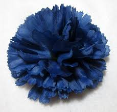 blue carnations blue carnation hair flower