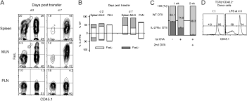 a novel role for il 27 in mediating the survival of activated