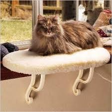 Petco Cat Beds Cat Beds Window Heated Petco Reviews 2291340 Cen Msexta