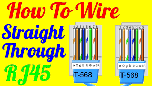 cat 5 wall plate wiring diagram diagrams picturesque five