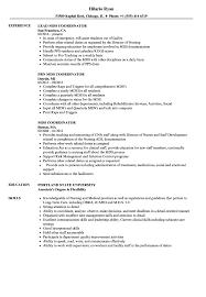 resume exles objective for any position trigger mds coordinator resume sles velvet jobs