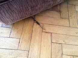 floor sanding parquet restoration in