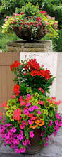 designing a flower garden layout 1691 best container gardening ideas images on pinterest plants