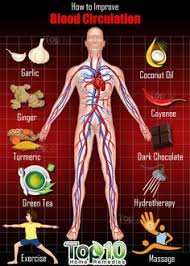 dangers of the paleo diet part 1 health care diabetes and medical