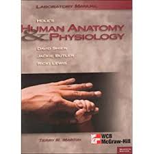 Human Anatomy And Physiology Lab Manual Marieb Human