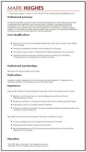 cv example with publications myperfectcv