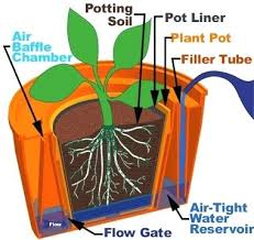 How To Make Self Watering Planters by Self Watering Planters Self Watering Vegetable Garden Containers