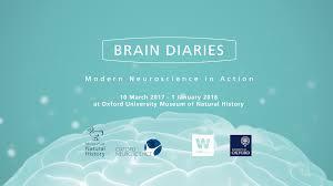 brain diaries modern neuroscience in action