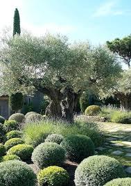 Mediterranean Gardens Ideas Mediterranean Gardens Ideas Mediterranean Garden Ideas Pinterest