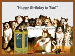 singing happy birthday of cats singing happy birthday refrigerator magnet