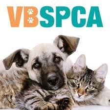 virginia beach spca home facebook