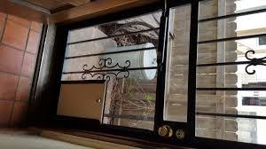 cat running into glass door dog doors sales and installation in colorado call the dog door