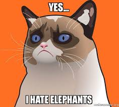 Grumpy Cat Yes Meme - yes i hate elephants cartoon grumpy cat make a meme