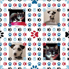 cat christmas wrapping paper personalized pet wrapping paper for dog and cat by giftskins