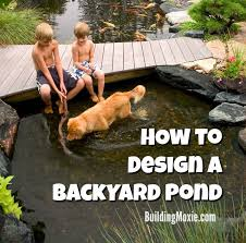 Backyard Pond Building Tips For Designing A Backyard Pond Building Moxie