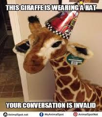 Giraffe Meme - april giraffe meme different types of funny animal memes