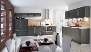Pictures Of Modern Kitchen Cabinets Pictures Of Kitchens Modern Gray Kitchen Cabinets