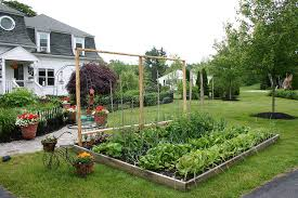 local laws ban front yard food gardens in cities across the us