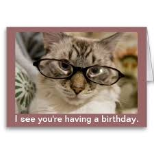 17 best cat birthday cards images on pinterest cat birthday